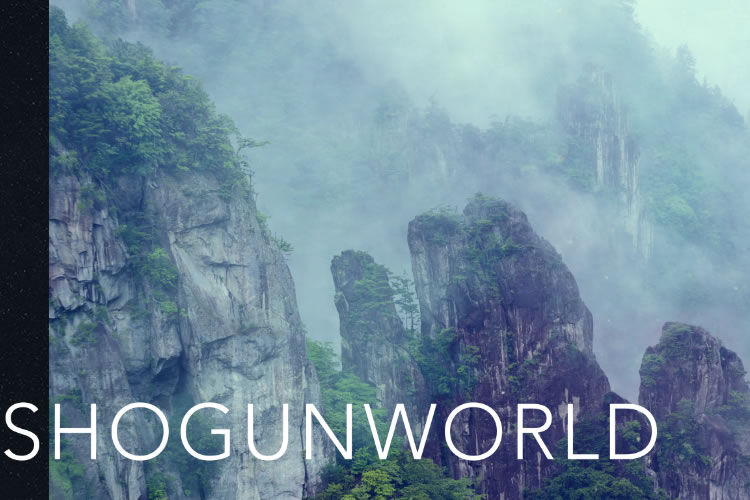 presentacion de shogun world