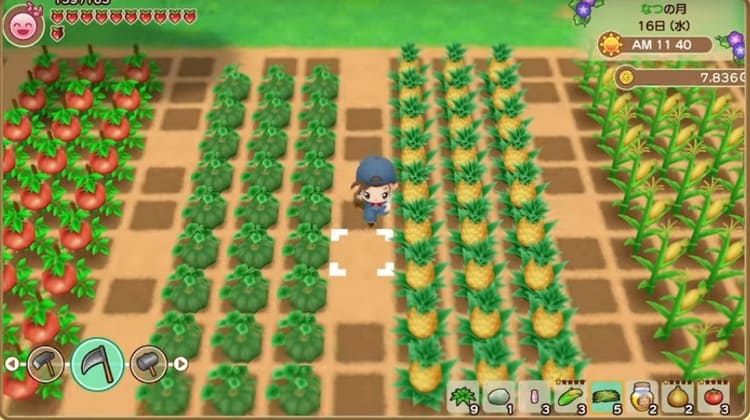 Story of Seasons: Friends of Mineral Town en Occidente