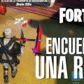 Desafío Fortnite: Encuentra una rosa en Granja de Acero o El Huerto